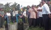 Upsus Banten: Tingkatkan Produktivitas Menuju Swasembada Pangan Nasional
