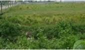 Badan Peneliti Independent Akan Meja Hijaukan Mantan Ketua DPRD, Terkait Pengadaan Tanah Puspemkab Serang dengan Fee 2 Milyar.