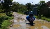 Warga Desa Pasir Kupa Kecamatan Kalanganyar Meminta Pemda Lebak  Segera Perbaiki jalan Rusak  Di Desanya
