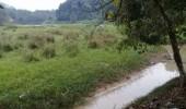 Petani Warga Desa Mekarjaya Keluhkan Pendangkalan Aliran Sungai Cimarga Akibat Limbah Galian C