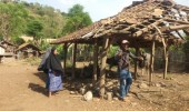 Tiga Ekor Kerbau Milik Warga Salira Di Gasak Maling